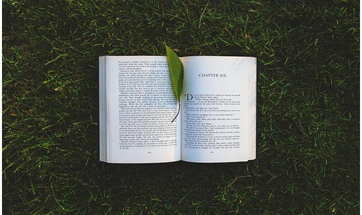 10 livros YA que todo mundo deve ler