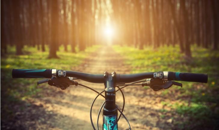 Bicicleta aro 29: veja as vantagens e desvantagens