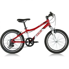 Bicicleta Caloi 7 Marchas Aro 20 Suspensão Dianteira Freio V-Brake Wild XS
