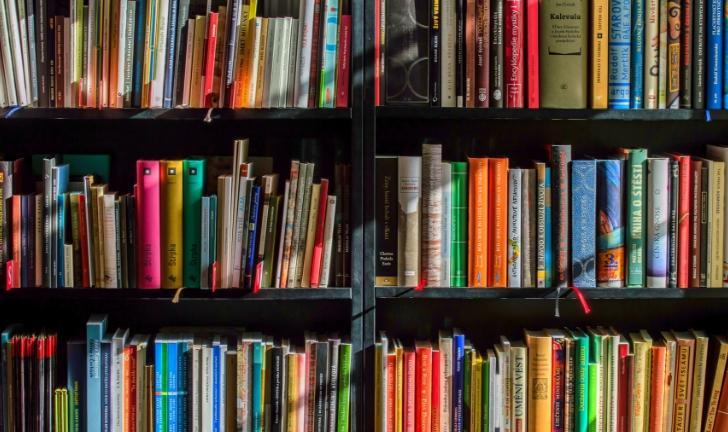 Como organizar livros?