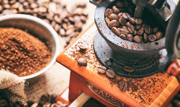 Os 5 Melhores Moedores de Café para Comprar em 2019