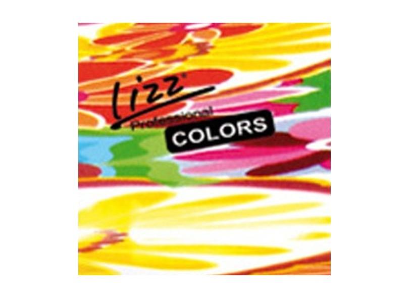 Secador de Cabelo Profissional com Ar Frio Emissão de Íons 2200 Watts - Lizz  3800 Colors 5fdefd3018df