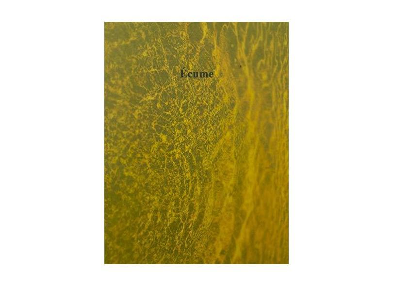 Écume - Isidora Gaji - 9788569557159