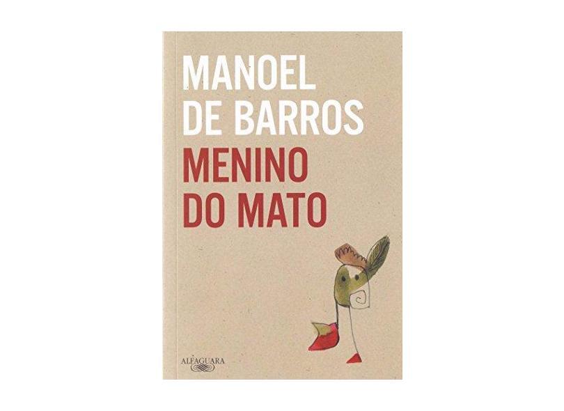 Menino do Mato - Capa Comum - 9788579624087