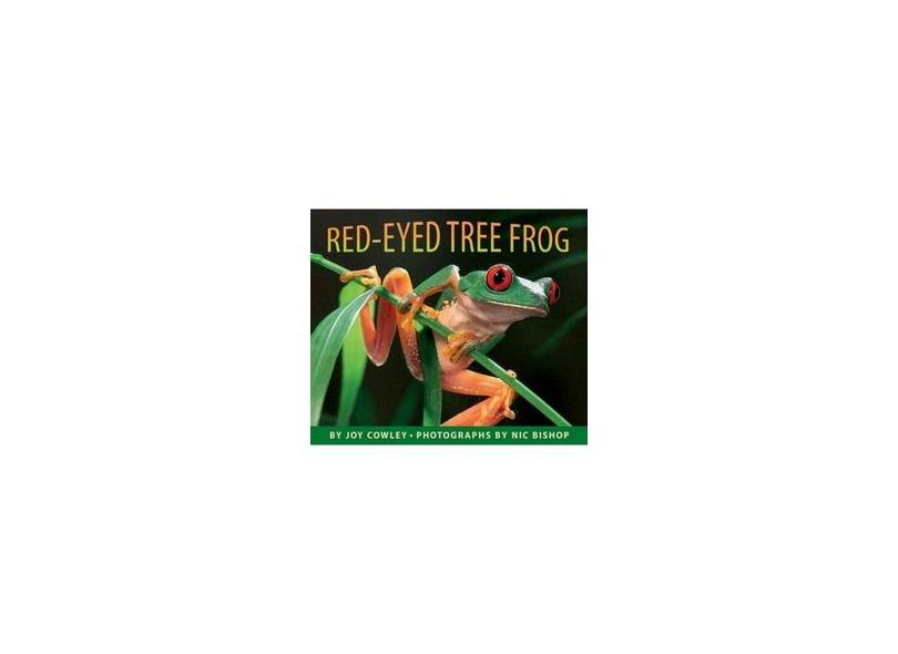 Red-eyed Tree Frog - Joy Cowley - 9780590871754