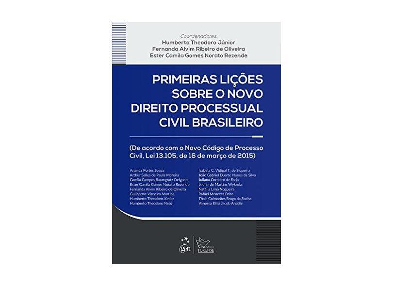 Primeiras Lições Sobre o Novo Direito Processual Civil Brasileiro - Capa Flexível - 9788530964849