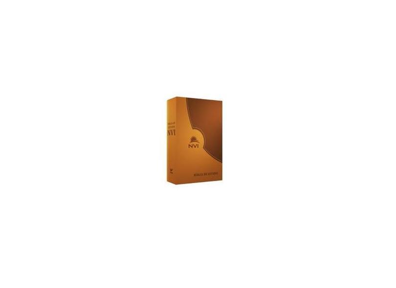 Biblia De Estudo Nvi - Preta E Cinza C/Indice - Capa Comum - 9788000001906