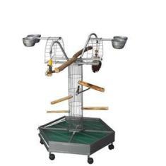 Imagem de Play Toy For Bird Parque Morapet