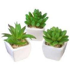 Imagem de Kit 3 Plantas Mini Suculentas Artificiais Vaso Cerâmica