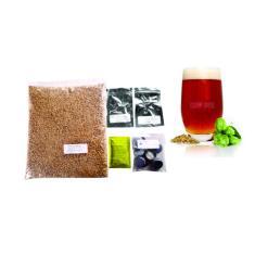 Imagem de Kit Cerveja Pumpkin Ale - 40L Brewbeer Com Insumos E Receita