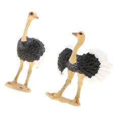 Imagem de 2pcs Simulação Modelo Animal Selvagem Figura Brinquedos Estatueta Decoração De Avestruz