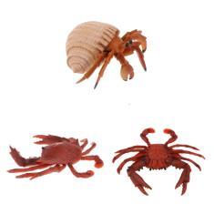 Imagem de Simulação Figura De Modelo Animal Brinquedos Estatueta Decoração Da Casa Caranguejo  / Caranguejo Eremita