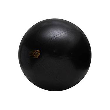 5451208ab Fit Ball Training Pretorian Performance 65 - FBT65 PP