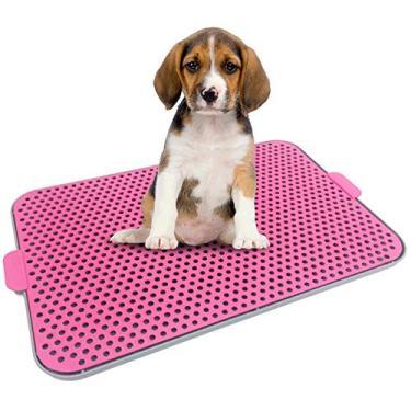 Sanitário Canino Xixi Dog Fácil Para Cães/Tapete Higiênico