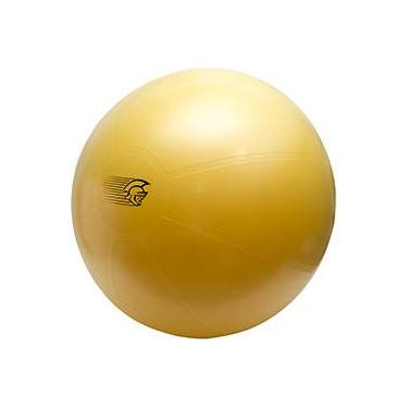 29985cab9 Fit Ball Training Pretorian Performance 75 - FBT75 PP