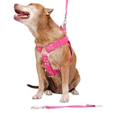 Peitoral para Cachorro com Guia e Adaptador raça grande