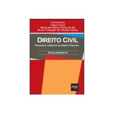 Direito Civil - Princípios Jurídicos no Direito Privado - Atualidades III - Fiuza, Cesar; Sa, Maria De Fatima Freire De; Naves, Bruno Torquato De Oliveira - 9788538400035