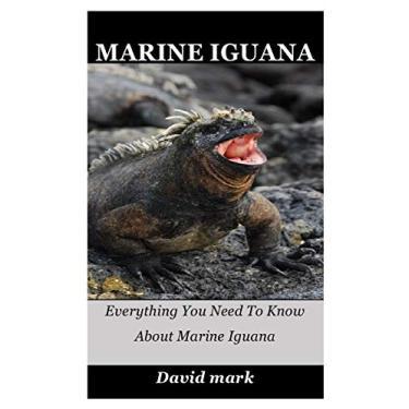 Marine Iguana: Everything You Need To Know About Marine Iguana