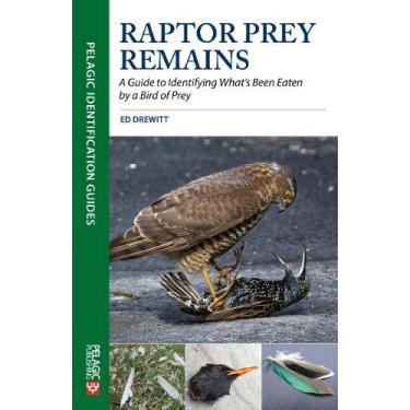 Raptor Prey Remains: Guide Identifying