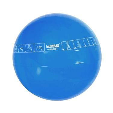 e133ffb6fe Bola Suíça Para Pilates Liveup Sports Ls3577 65Cm Azul