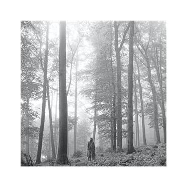 """Imagem de CD Taylor Swift – Folklore 1. The """"In The Trees"""" Deluxe Edition"""