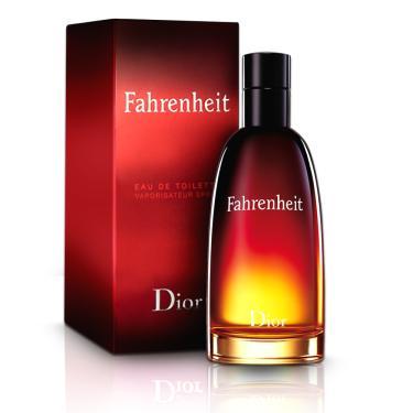 Perfume Fahrenheit Masculino Eau De Toilette 50ml  Christian Dior