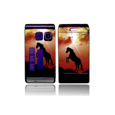 Capa Adesivo Skin377 Sony Ericsson W380