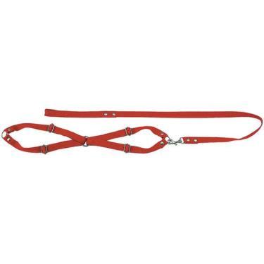 Conjunto Guia de Seda com Peitoral Vermelho - Mini