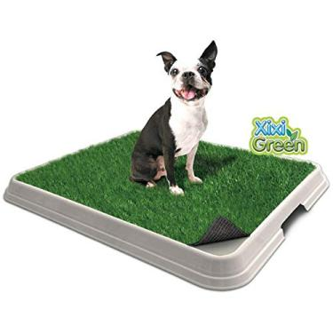 Sanitário Higiênico para Cães Pet Injet Xixi Green Premium