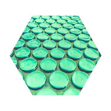 Imagem de Capa Térmica Piscina 8 X 4 Thermocap 300 Micras Verde