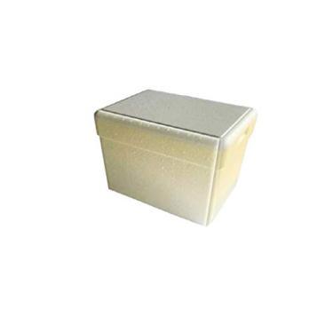 Imagem de Caixa De Isopor 3 Litros Termica Gelo Cerveja Refri Isoterm