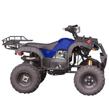 Quadriciclo PRO ATV 250cc Freio a Disco Gasolina Partida Elétrica 4 Tempos - TATV250