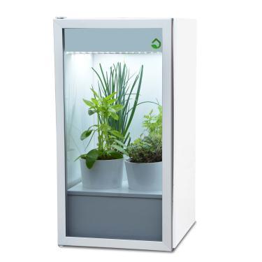 Plantário MINI 4 vasos - Horta em casa