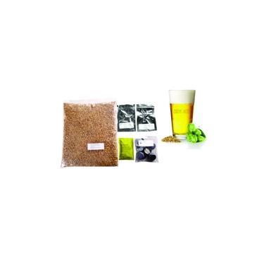 Kit Cerveja American Lager 20L Brewbeer Com Insumos E Receita
