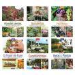 Coleção Seu Jardim - Vários Autores - 9788579604584